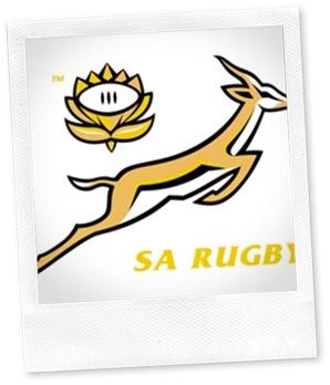 SA Rugby Springboks Logo (c) SARU
